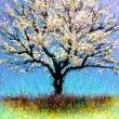 Der blühende Kirschbaum * vergrößern